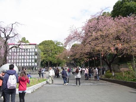 3月21日(月)連休の上野公園