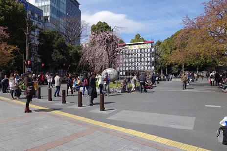上野公園:桜が咲きだしました。
