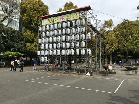 4月8日(金) 葉が多くなった上野公園!