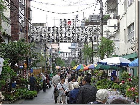 お富士さんの植木市【平成28年5月28日、29日 6月25日、26日】