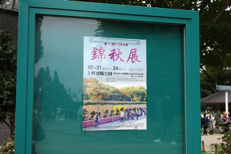 国立西洋美術館『クラーナハ展―500年後の誘惑』が10/15日(土)から始まります。 上野公園 美術館・博物館 混雑情報他