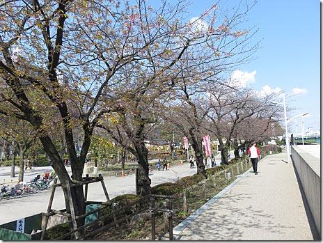 隅田川きもの園遊会開催【29年4月1日】