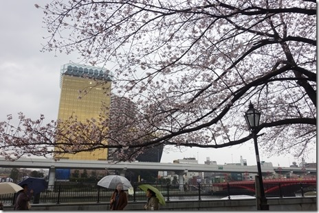 プレミアム金曜日、しかし雨の隅田公園