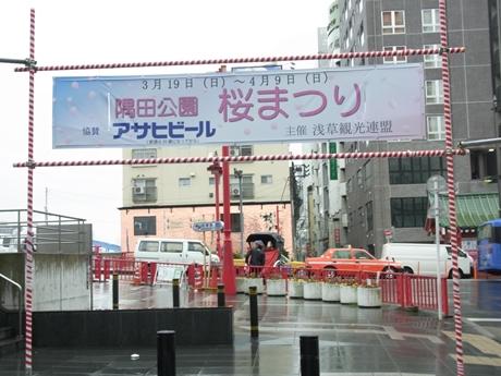 初日から雨! 隅田公園の様子