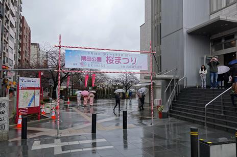 冷たい雨の隅田公園