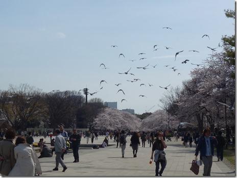 春休みは「大英自然史博物館展」へGO!上野公園 美術館・博物館 混雑情報他