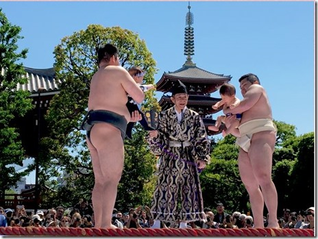 九代目市川團十郎「暫」復元記念 泣き相撲 2017/4/29