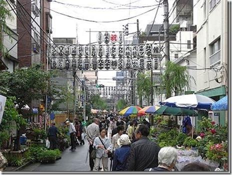 お富士さんの植木市【平成29年5月27日、28日 6月24日、25日】