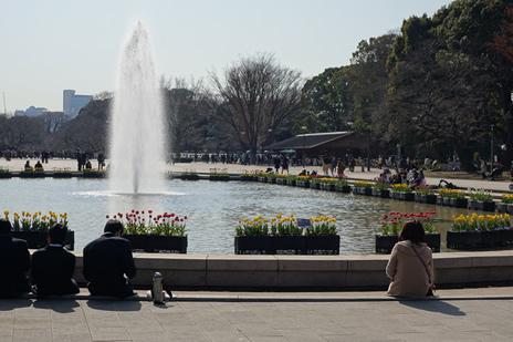 国立科学博物館で開催中の『古代アンデス文明』展が2/18(日)で終了します。 上野公園 美術館・博物館 混雑情報他