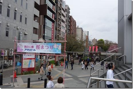 4月6日(金) ハナ金の隅田公園