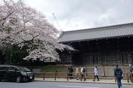 東京国立博物館にて3/26(火)より特別展『国宝 東寺―空海と仏像曼荼羅』が開催中。 上野公園 美術館・博物館 混雑情報他