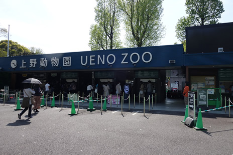 上野動物園にて『4月19日は「飼育の日」 飼育係に会いに行こう!』を開催。 上野公園 美術館・博物館 混雑情報他