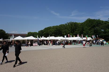 噴水前広場にて『さつきフェスティバル』が6/3(月)まで開催中。 上野公園 美術館・博物館 混雑情報他