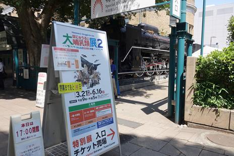 国立科学博物館で開催中の『大哺乳類展2 』が今週末で終了。 上野公園 美術館・博物館 混雑情報他