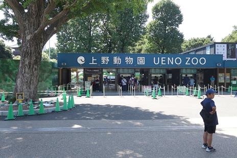 上野動物園にて8/10(土)より『真夏の夜の動物園』を開催。 上野公園 美術館・博物館 混雑情報他