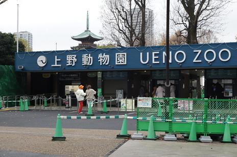 上野動物園にて『2020年のお正月は動物園・水族園へ』が1月2日(木)から開催。 上野公園 美術館・博物館 混雑情報他