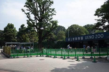 上野動物園が6/23(火)より再開されました。 上野公園 美術館・博物館 混雑情報他