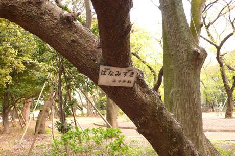 20070410_012.jpg