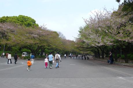 20070411_007.jpg
