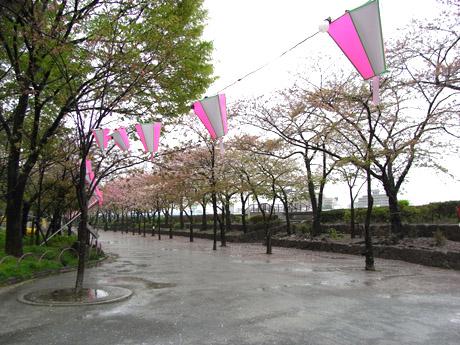 20080408_004.jpg