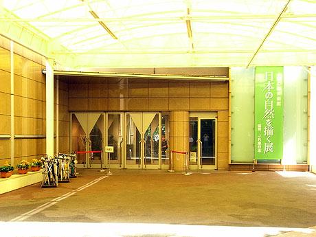 日本の自然を描く展 - 上野の森美術館