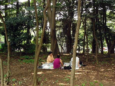 上野公園も木陰なら涼しいですよ!ただいまランチ中!