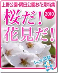 2010-3-0