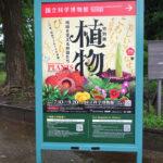 国立科学博物館にて7/10(土)より特別展『植物 地球を支える仲間たち』が開催。 上野公園 美術館・博物館 混雑情報他